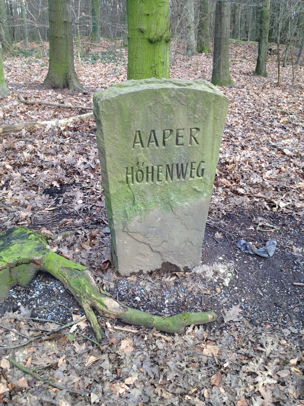 Aaper Wald